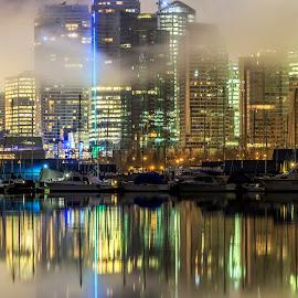 Fog City by Nico Carbajales - City,  Street & Park  Skylines