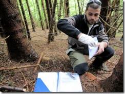 Andrea Caboni, dell'università di Udine, mentre archivia sul campo un pelo di orso appena prelevato dal filo di ferro che circonda l'esca