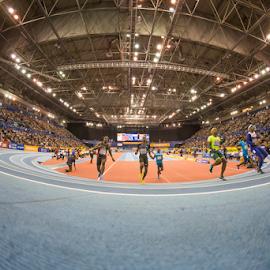 Birmingham Indoor Grand Prix - Feb '15 by Toyin Oshodi - Sports & Fitness Running ( field, athletics, indoor, birmingham, track )