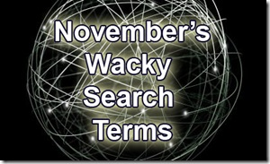 november's wacky search terms