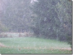 First Snow-October 2010 003