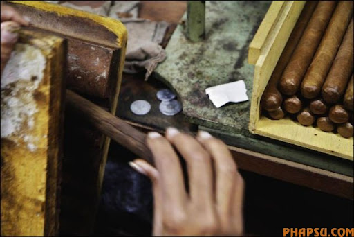 cuban_cigars_cohiba_10.jpg