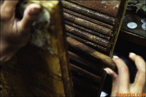 cuban_cigars_cohiba_11.jpg