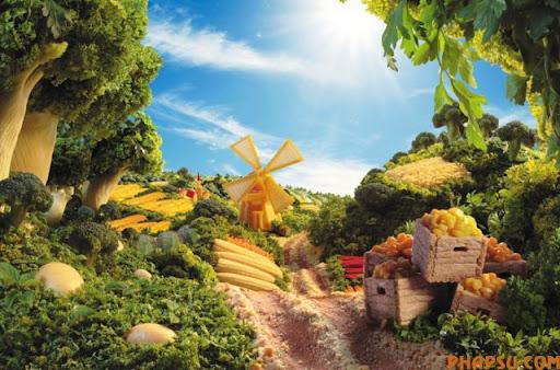 food_landscapes_003.jpg