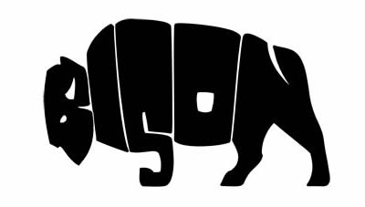 a97034_bison.jpg