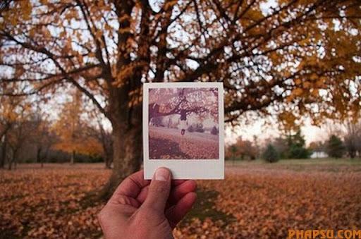 playing-with-polaroid19.jpg