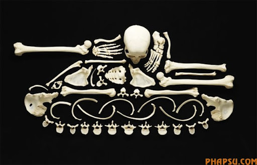 bone-tank.jpg