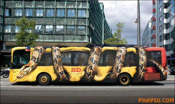 funny-bus-images02.jpg