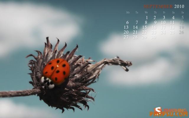 september-10-parallel-universe-calendar-1440x900.jpg