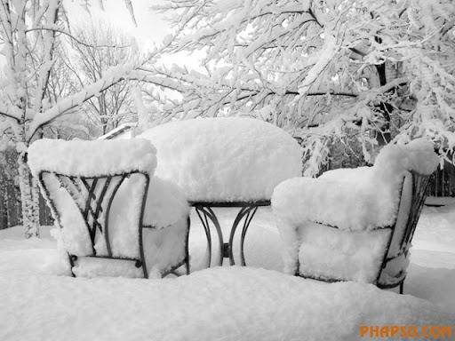 winter_22845276_1efbefd1c2_b.jpg