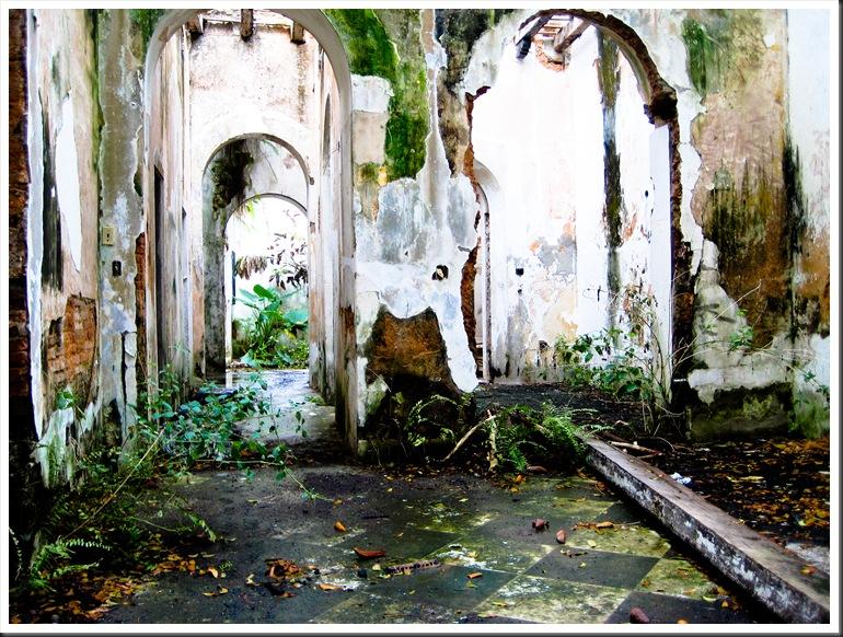 Puerto Rico 2010 016
