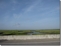 Marsh view from Isle of Palms Connector