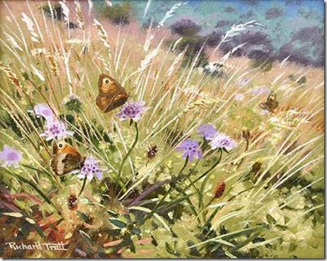 tratt_Meadow_Browns