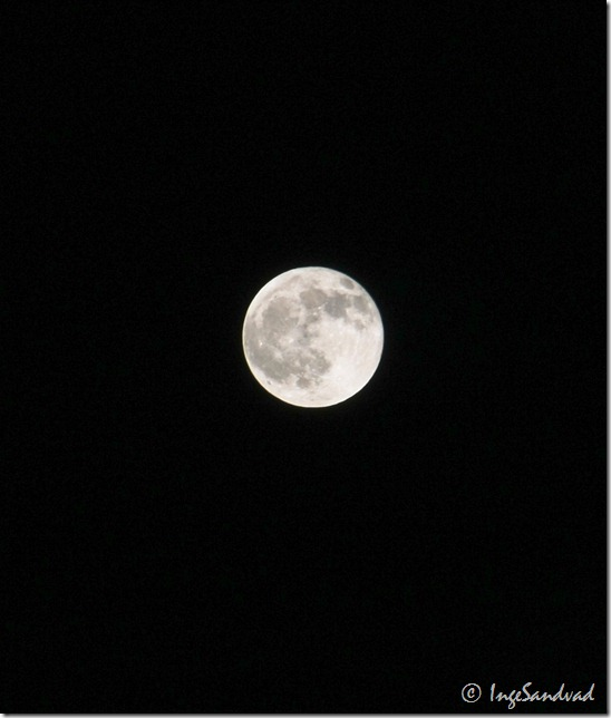 månen - 21-12-2010 18.19