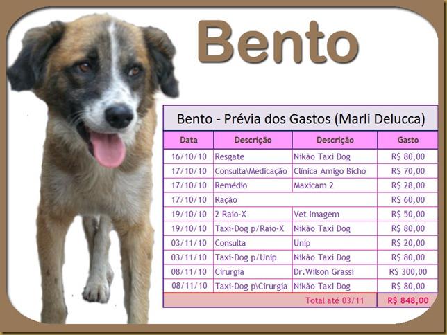 bento_g0311