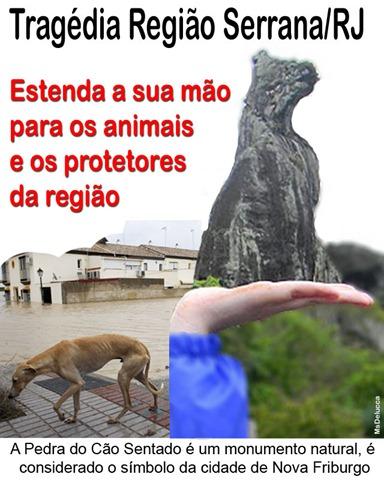 animais_serrarj