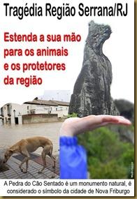 animais_serrarj_thumb