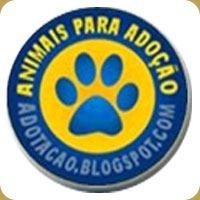 adotacao_thumb[1]