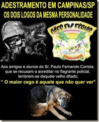 caes_torturados06