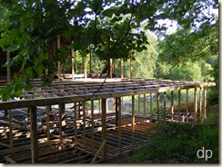 purlins on the back porch