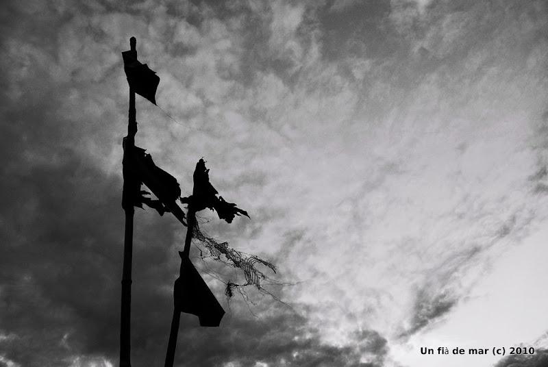 Black flags 2
