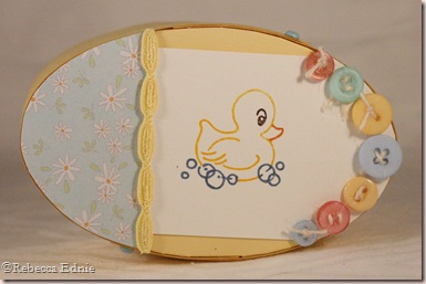 duck shaker box top