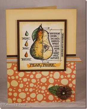 anatomy of a pear earthlove