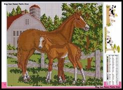 cavalos2 (1)
