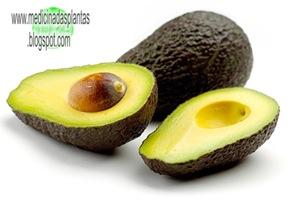 abacate-tratamentos-naturais
