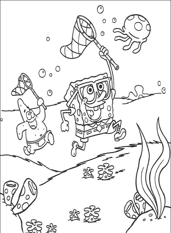 bob esponja (5)