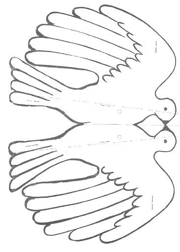 palomas paz (11)