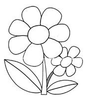 flores_68