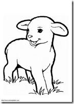 ovejas blogcolorear. com (3)