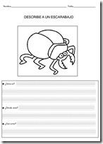 animales primaria - blogcolorear-com (8)