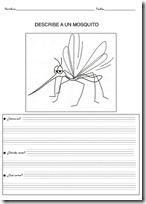 animales primaria - blogcolorear-com (16)