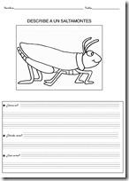 animales primaria - blogcolorear-com (22)
