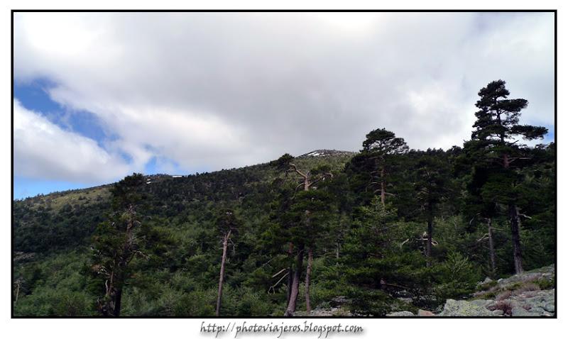 Peña Bercial y Cerro Minguete desde Calzada Romana