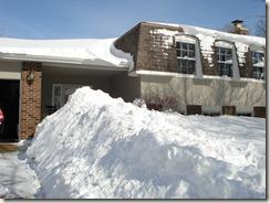 blizzard 02-01-11 011
