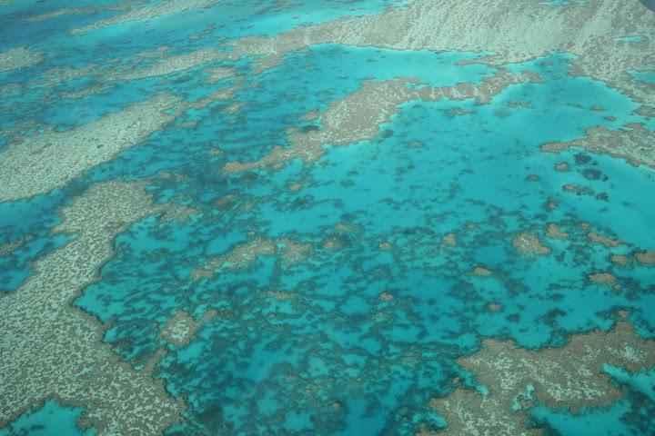 La Grande Barrière de Corail - Australie 169_Whitsundays_GreatBarrierReef