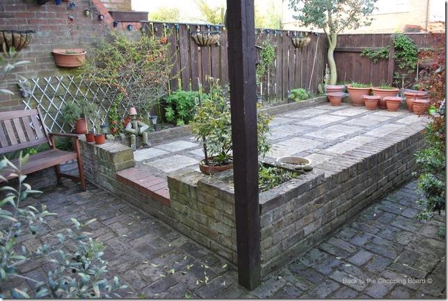 My Garden (4)