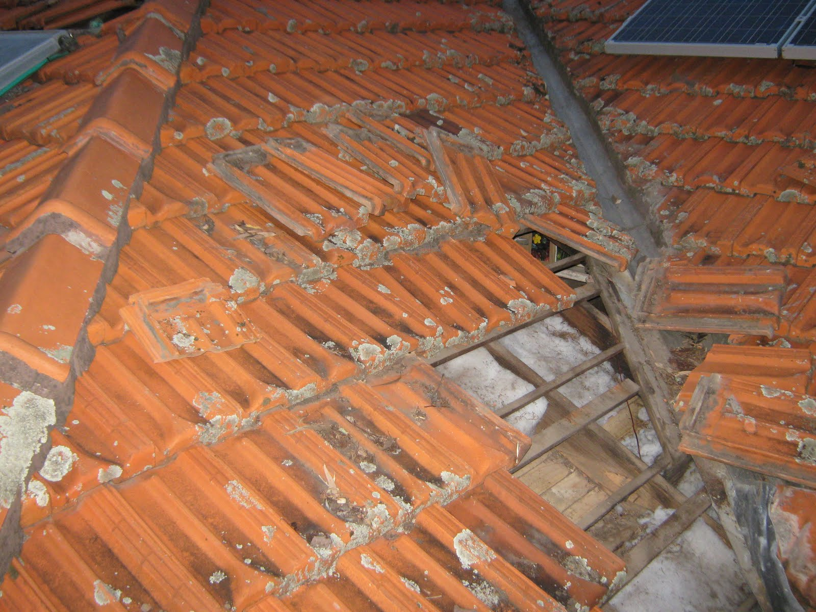 here is a triptych of three photos showing that section of the roof from left to right try to view them side by side