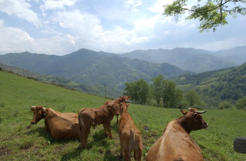 Urbiés ( Paisaje Protegido de las Cuencas Mineras)