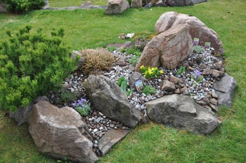 Squarciomomo lifting al giardino roccioso - Giardino roccioso foto ...