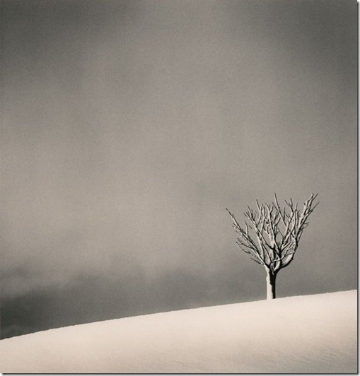 more freak show blog michael kenna Silent World (4)