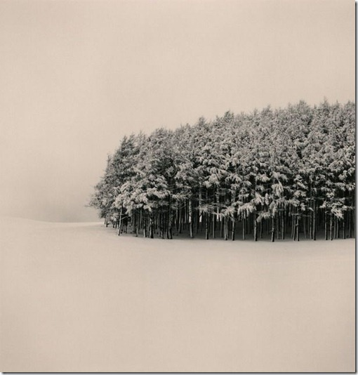 more freak show blog michael kenna Silent World (5)