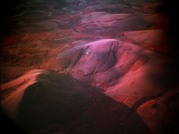 Infrared-Photography-by-Richard-Mosse-10
