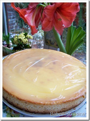 cheese cake citron entier
