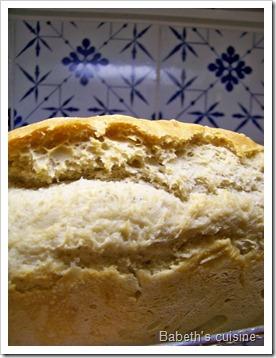 pain épautre