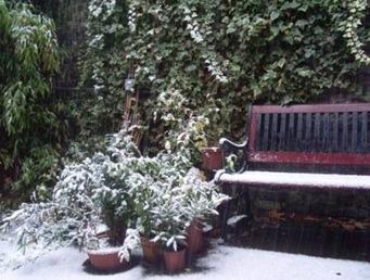 neige terrasse 22 11