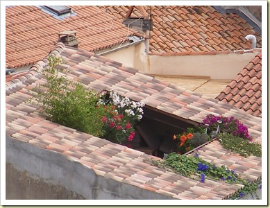 jardin toit hyères